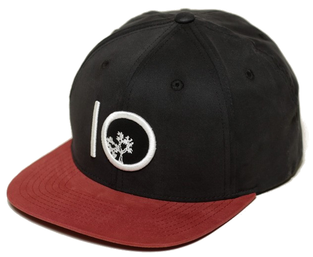 72327a78363 Tentree Classic Snap Hat - Unisex